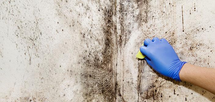forebyggende-vedligeholdelse-i-virksomheden-tekstbillede-703x336